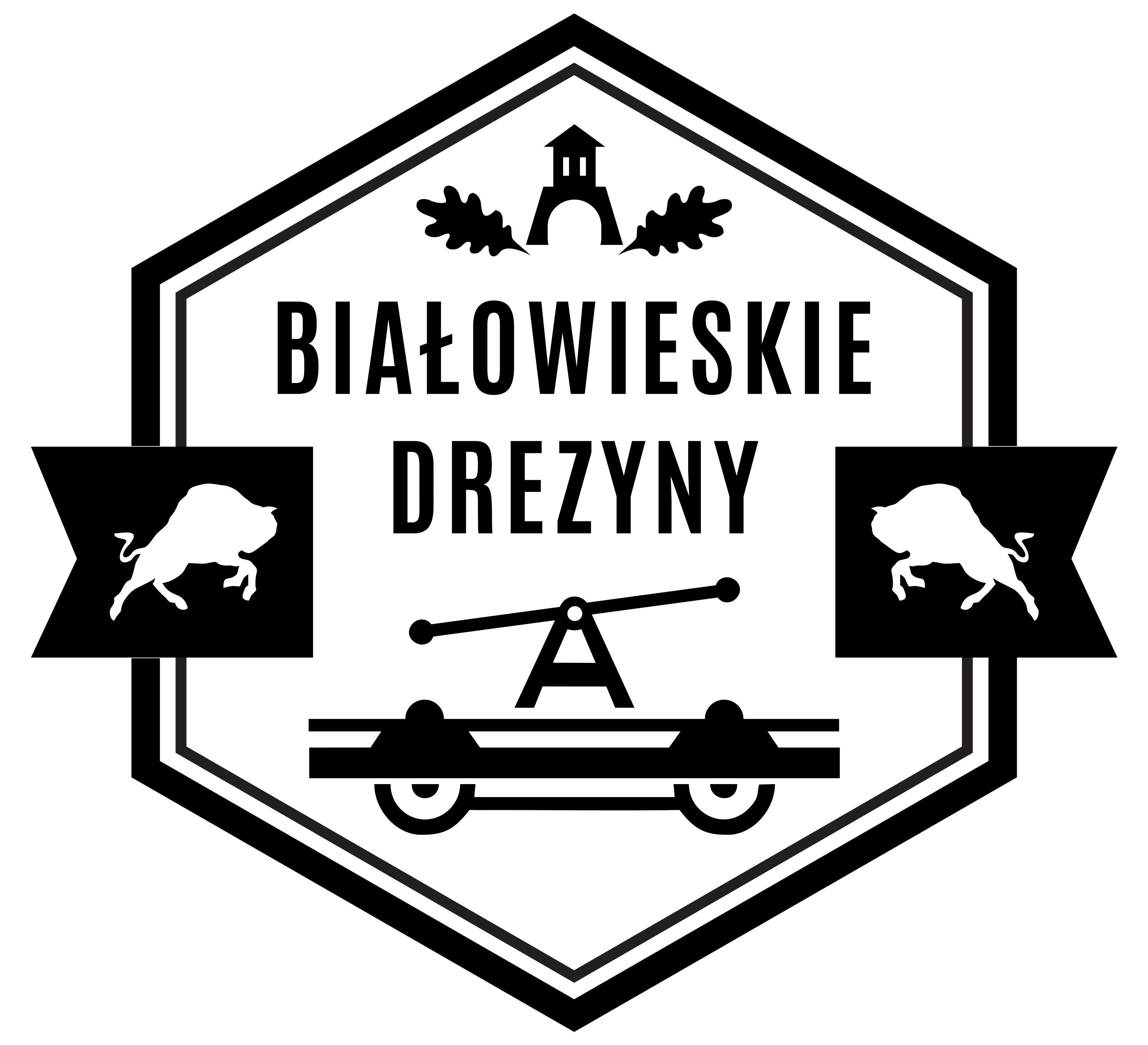 Rezerwacje wycieczek Białowieskie Drezyny